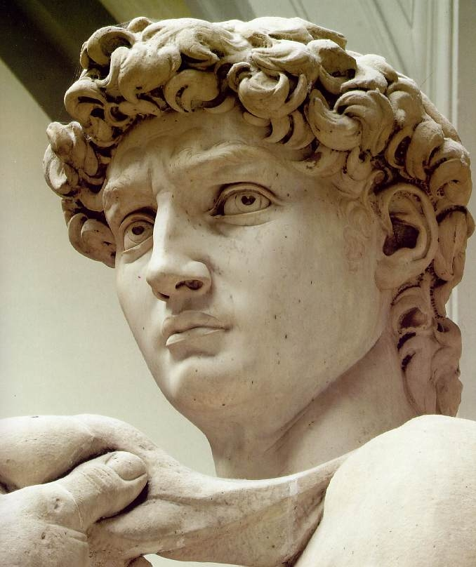 michelangelo_david_head.jpg